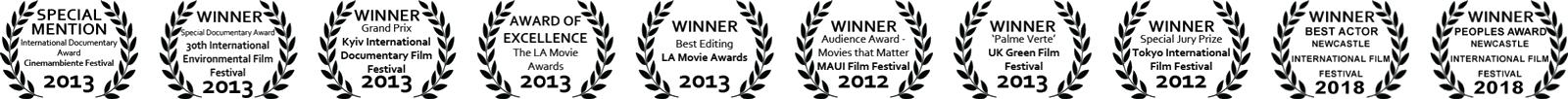 Film Awards for Blenheim Films independent film makers